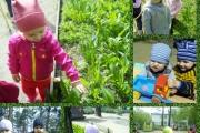 Весна, весна